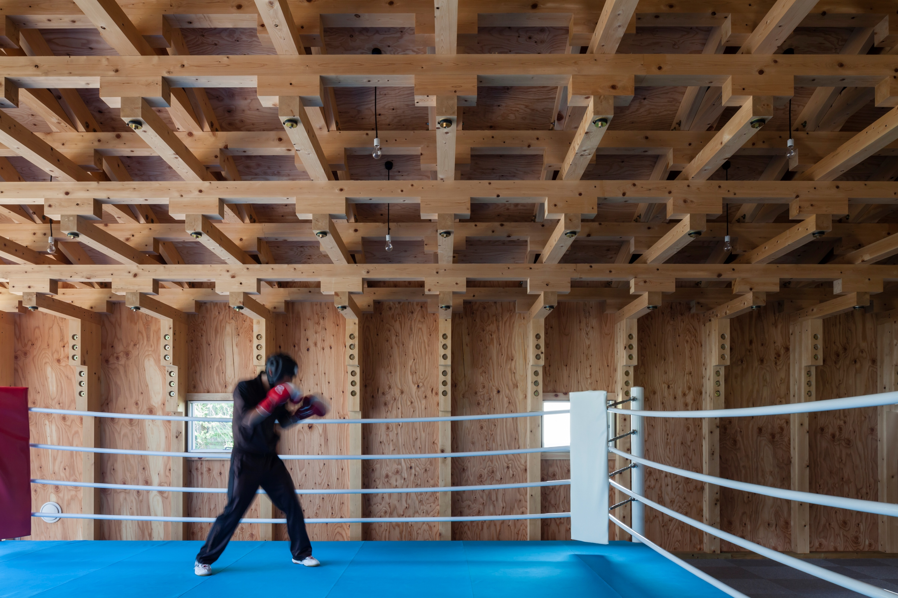 Boxing Club - FT Architects : vista boxe e struttura